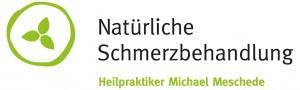 logo_meschede-big